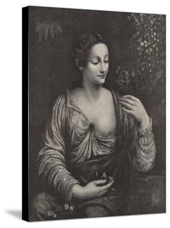 Portrait of a Young Lady--Stretched Canvas Print