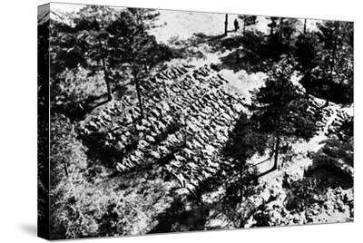 Aerial Photograph of Excavated Bodies from the Mass Graves in Katyn Forest, 1943--Stretched Canvas Print
