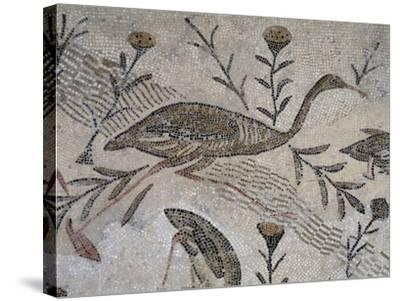 Ducks and Flowers, Detail from Mosaic Depicting Nilotic Landscape, Uncovered in Thysdrus--Stretched Canvas Print
