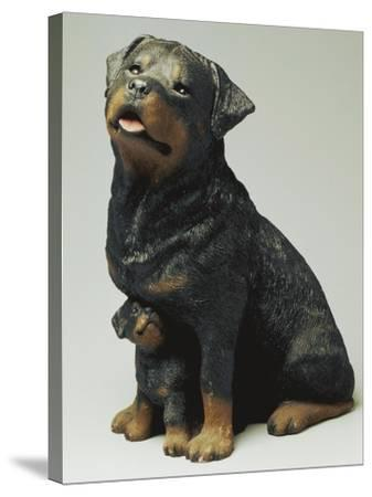 Rottweiler and Puppy-Sandra Brue-Stretched Canvas Print