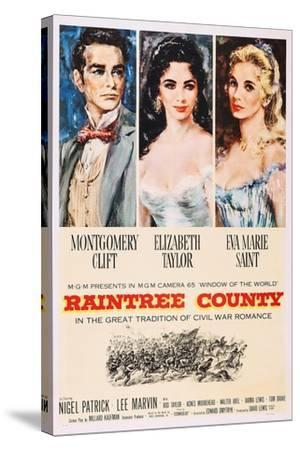 Raintree County--Stretched Canvas Print