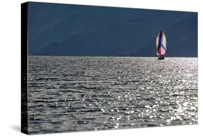 Spinnaker Sailing in British Columbia-Dave Heath-Stretched Canvas Print