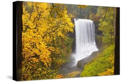 Fall Colors Add Beauty to North Middle Falls, Silver Falls State Park, Oregon, Pacific Northwest-Craig Tuttle-Stretched Canvas Print