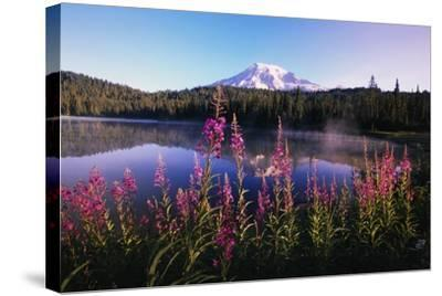 Mount Rainier Reflecting in Lake-Craig Tuttle-Stretched Canvas Print