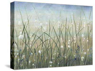 Bliss II-Tim O'toole-Stretched Canvas Print