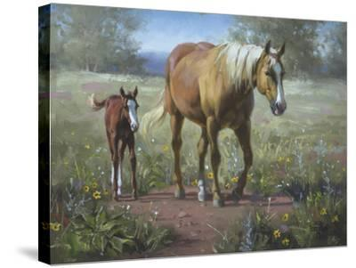 Comin' In-Jack Sorenson-Stretched Canvas Print