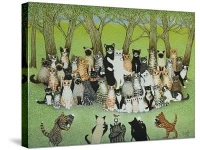 Watch the Birdie-Pat Scott-Stretched Canvas Print
