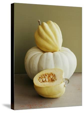 Varieties of Squash.-Victoria Pearson-Stretched Canvas Print