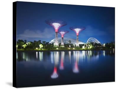 Singapore Garden by Bay Super-Trees-Tomatoskin-Stretched Canvas Print