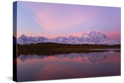 Sunset, Mount Mckinley in Denali National Park, Alaska Reflected in Reflection Pond.-Mint Images - David Schultz-Stretched Canvas Print
