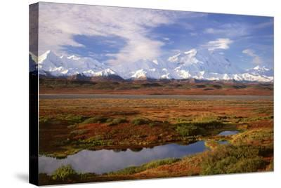 Tundra and Kettle Pond in Denali National Park, Alaska in the Fall. Mount Mckinley in the Backgroun-Mint Images - David Schultz-Stretched Canvas Print