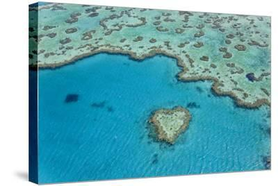 Heart Reef, Part of Great Barrier Reef, Australia-Peter Adams-Stretched Canvas Print