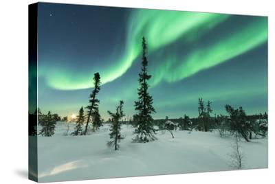 Aurora with Moon Rising-Michael Ericsson-Stretched Canvas Print