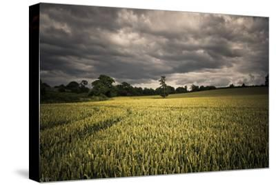 Every Now and Then, the Sun Comes out to Produce D-A photo by Fletche-Stretched Canvas Print