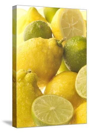 Lemons and Limes Close-Up--Stretched Canvas Print