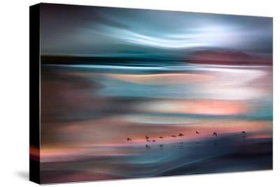 Migrations - Blue Sky-Ursula Abresch-Stretched Canvas Print