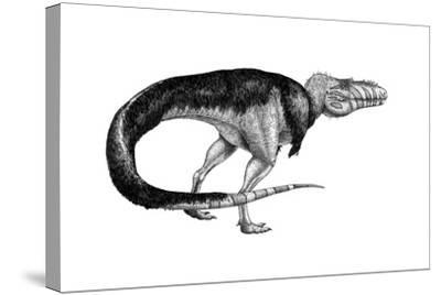 Black Ink Drawing of Alioramus Remotus--Stretched Canvas Print