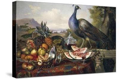 Still Life with Peacock-Luis Portu-Stretched Canvas Print