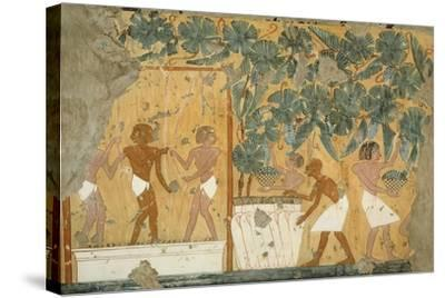 Ancient Egyptian Painting, 1936-Nina M. Davies-Stretched Canvas Print