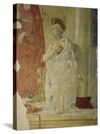 St Jerome, Attributed to Andrea Del Verrocchio Collaborators--Stretched Canvas Print