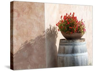 Europe, Italy, Tuscany. Flower Pot on Old Wine Barrel at Winery-Julie Eggers-Stretched Canvas Print