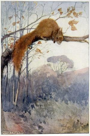 Squirrel in Tree C1917-Honor C. Appleton-Stretched Canvas Print