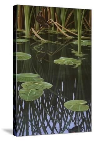 Reflections of Courtship-Wilhelm Goebel-Stretched Canvas Print