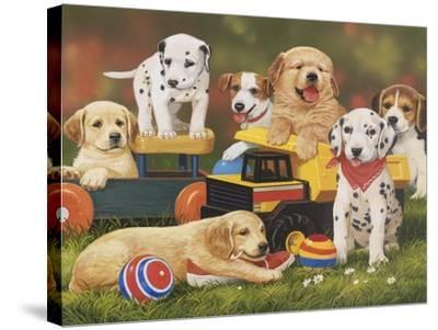 Puppy Play Group-William Vanderdasson-Stretched Canvas Print