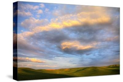 Rolling Hills of Green Spring Wheat and Evening Bright Clouds-Terry Eggers-Stretched Canvas Print