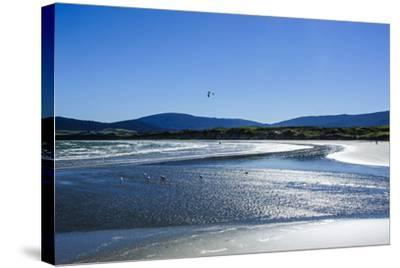 Te Waewae Bay, Along the Road from Invercargill to Te Anau, South Island, New Zealand, Pacific-Michael Runkel-Stretched Canvas Print