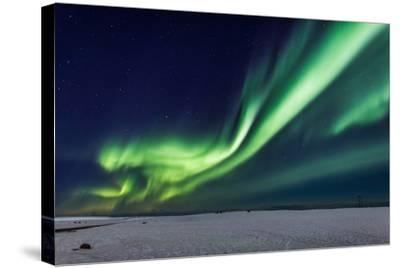 Aurora Borealis or Northern Lights, Iceland, Power Lines by the Jokulsarlon--Stretched Canvas Print
