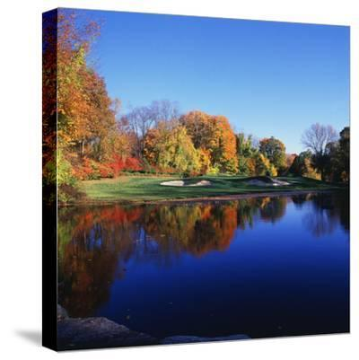 Trees in a Golf Course, Patterson Club, Fairfield, Connecticut, USA--Stretched Canvas Print