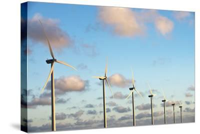 A 150 Feet Tall Wind Turbines Just Outside Arikok National Park-Mauricio Handler-Stretched Canvas Print