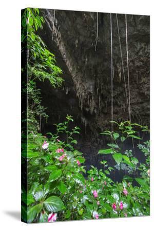 A Green Lush Jungle Entrance to the Grotto Azul Cave System in Bonito, Brazil-Alex Saberi-Stretched Canvas Print