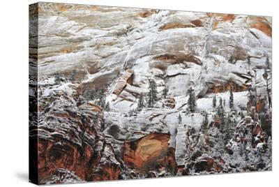 Snow-Covered Evergreen Trees, Cliffs, and Rock Formations in a Desert-Keith Ladzinski-Stretched Canvas Print