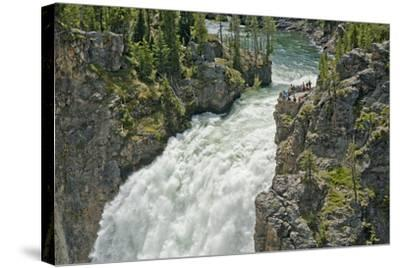 Tourists Watch Yellowstone River Plunge over Upper Yellowstone Falls-Gordon Wiltsie-Stretched Canvas Print