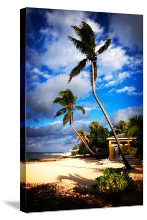 Palm Trees Sway over a Beach in the Cayman Islands in the Caribbean-Chris Bickford-Stretched Canvas Print