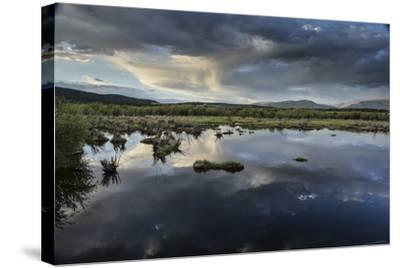 Reflections of Clouds in a Body of Water Near the Sawatch Mountains-Keith Ladzinski-Stretched Canvas Print