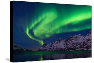The Aurora Borealis over Water and Mountains-Babak Tafreshi-Stretched Canvas Print