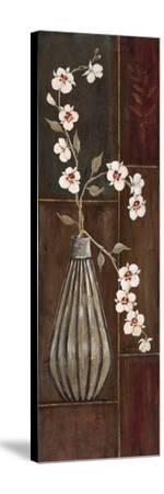 Delicate Orchids II-Jo Moulton-Stretched Canvas Print
