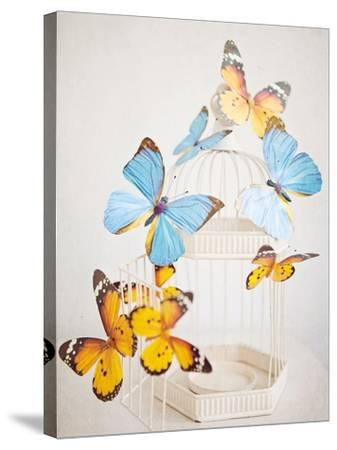 Happy Daydream 2-Susannah Tucker-Stretched Canvas Print