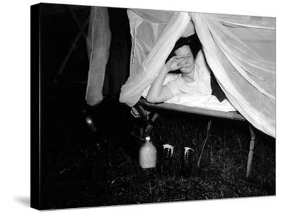 American Wac Raises the Netting over Her Cot as a Photographer's Flash Illuminates the Scene--Stretched Canvas Print