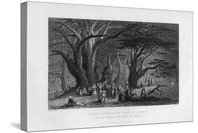 Ancient Cedars in the Forest of Lebanon, 1841-J Redaway-Stretched Canvas Print