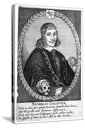 Nicholas Culpepper (1616-5)--Stretched Canvas Print