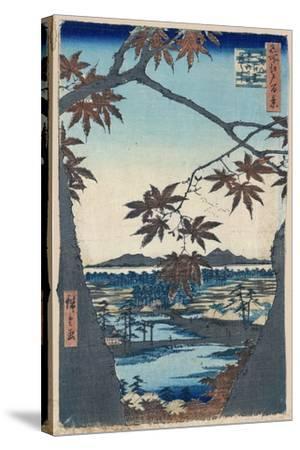 Maple Leaves and the Tekona Shrine and Bridge at Mama, 1856-1858-Utagawa Hiroshige-Stretched Canvas Print