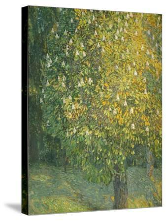 Blooming Chestnut Tree-Alexander Yakovlevich Golovin-Stretched Canvas Print