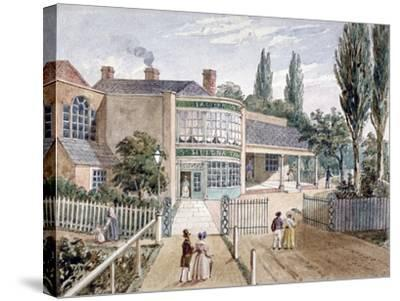 St Helena Tea Gardens, Lower Road, Rotherhithe, London, C1860--Stretched Canvas Print