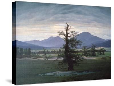 The Solitary Tree, 1823-Caspar David Friedrich-Stretched Canvas Print