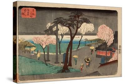 Cherry Trees in Rain on the Sumida River Embankment. (Sumida Zutsumi Uchû No Sakur)-Utagawa Hiroshige-Stretched Canvas Print