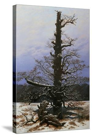 Oak Tree in the Snow-Caspar David Friedrich-Stretched Canvas Print